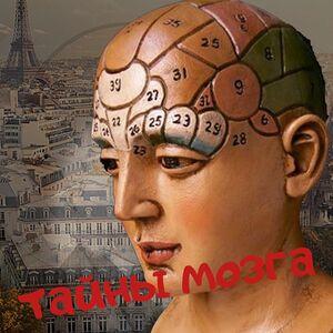 mesenrealism 1177437837592092514993408507004576201913300n