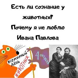 mesenrealism 1206022643716235308759828662184763660909493n