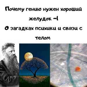 mesenrealism image 2021 04 09
